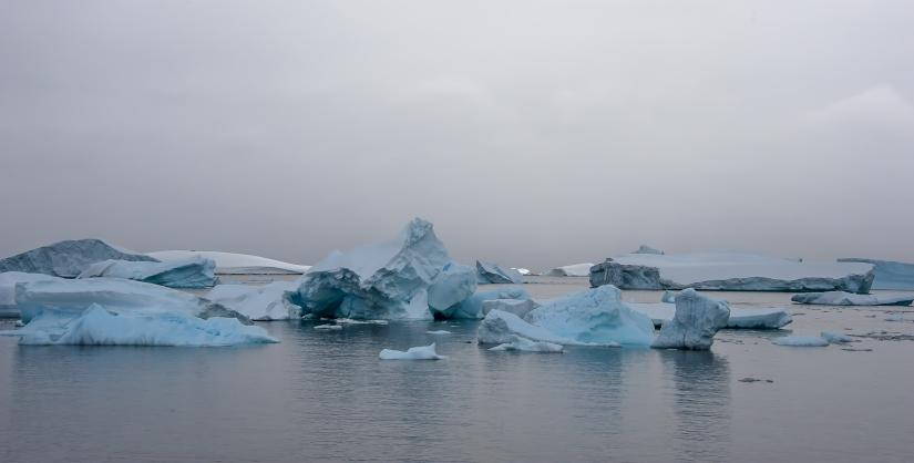 ... ghiaccio alla deriva, cuverville island, penisola antartica (04) ...