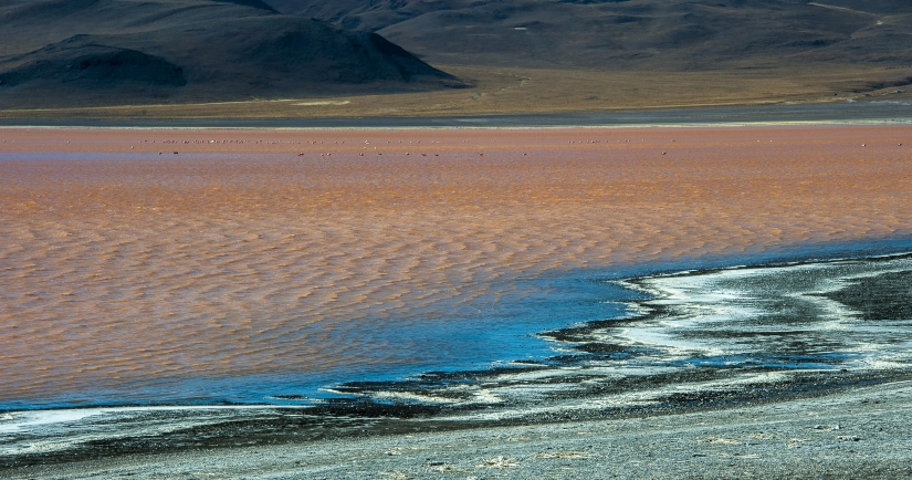 ... laguna colorada (02) ...