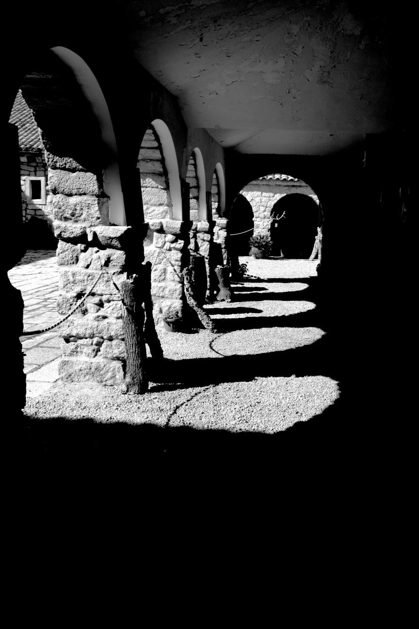 Archi, ombre e sugheri