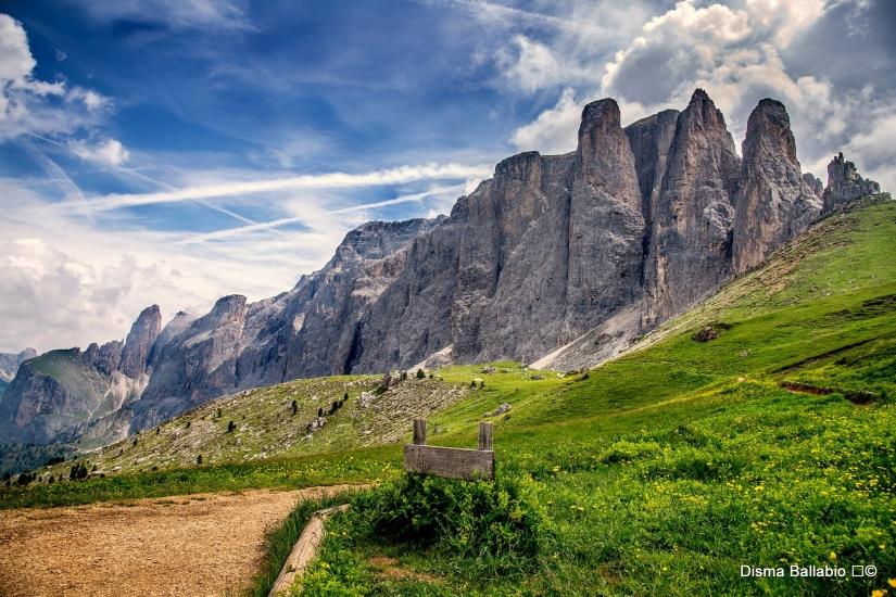 ' fiori gialli sotto il sass Pordoi '     * Passo Sella - versante Val Gardena *