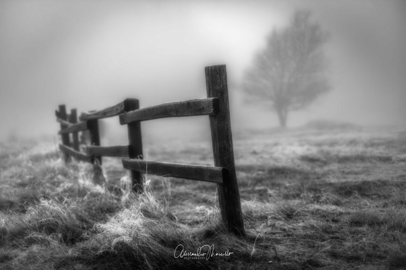 È l'incertezza che affascina. La nebbia rende le cose meravigliose.