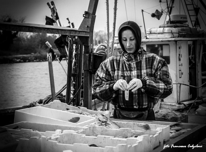 Pescatrice