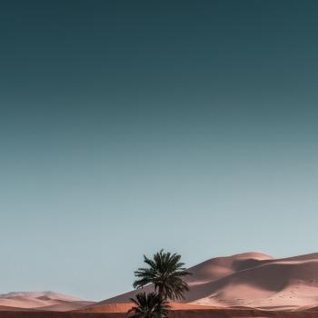 Alla ricerca del minimal nel deserto del Sahara