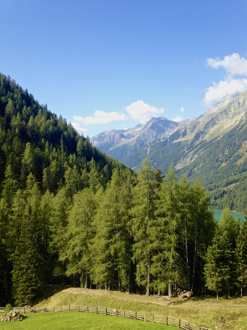 Alpi anterselva