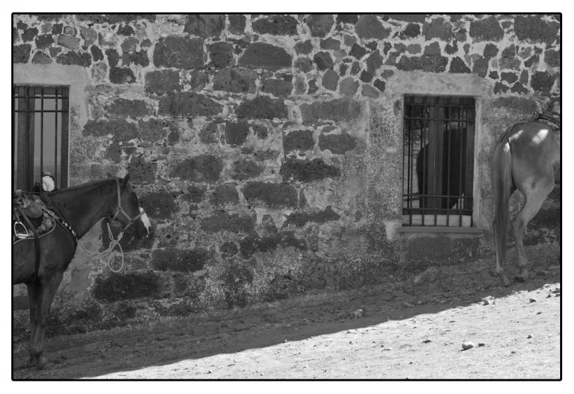 Ardia di S. Costantino- - Sedilo (Or) Italy # 22