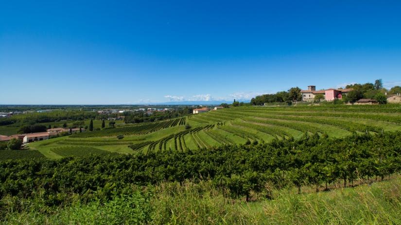 Around Colli Orientali del Friuli