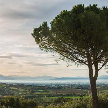 Assisi dove i confini non hanno fine