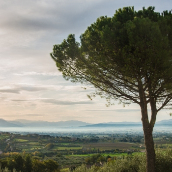 Assisi non solo città della pace!