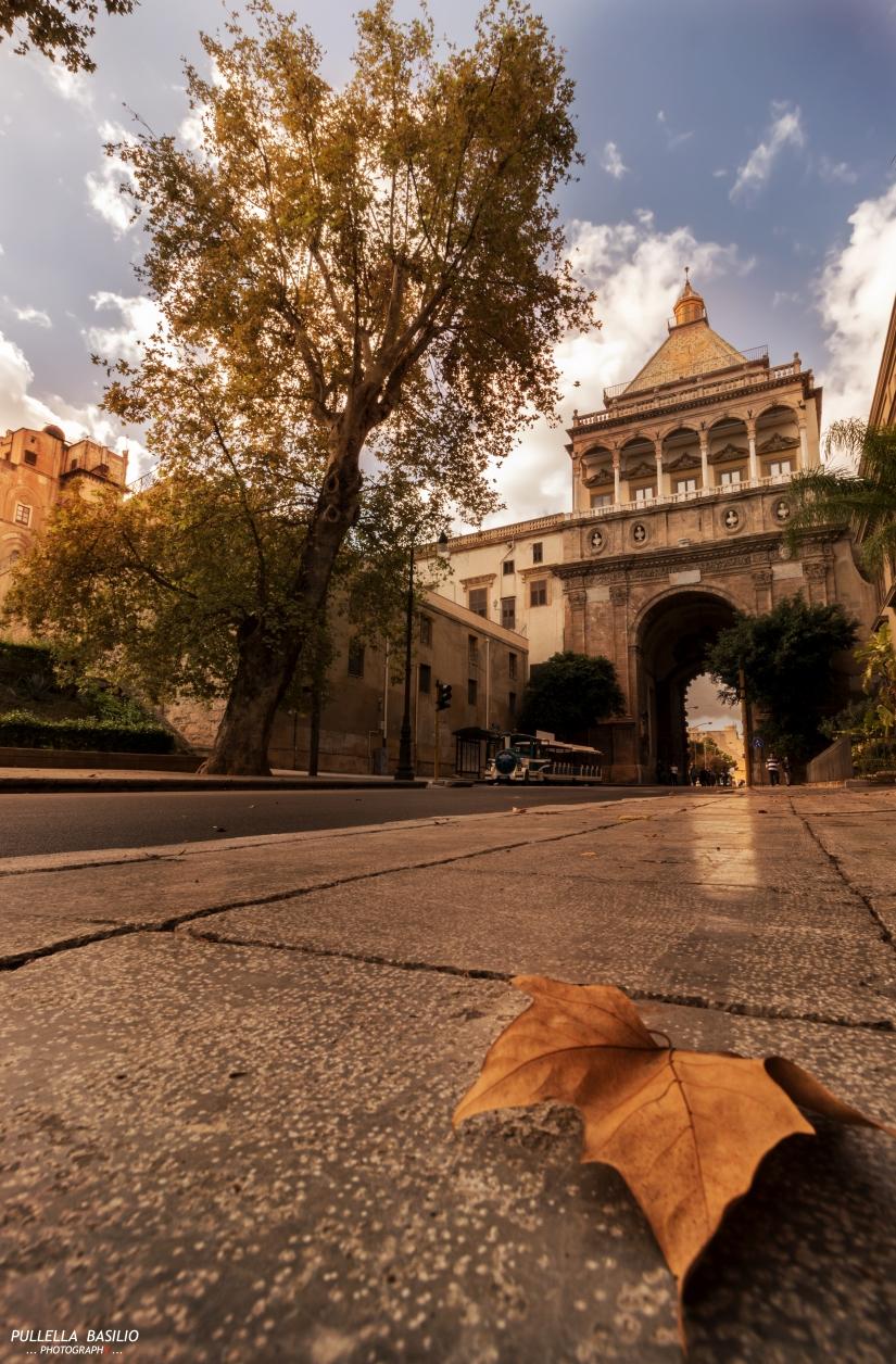 Autumn in Palermo
