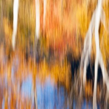 Autumnum