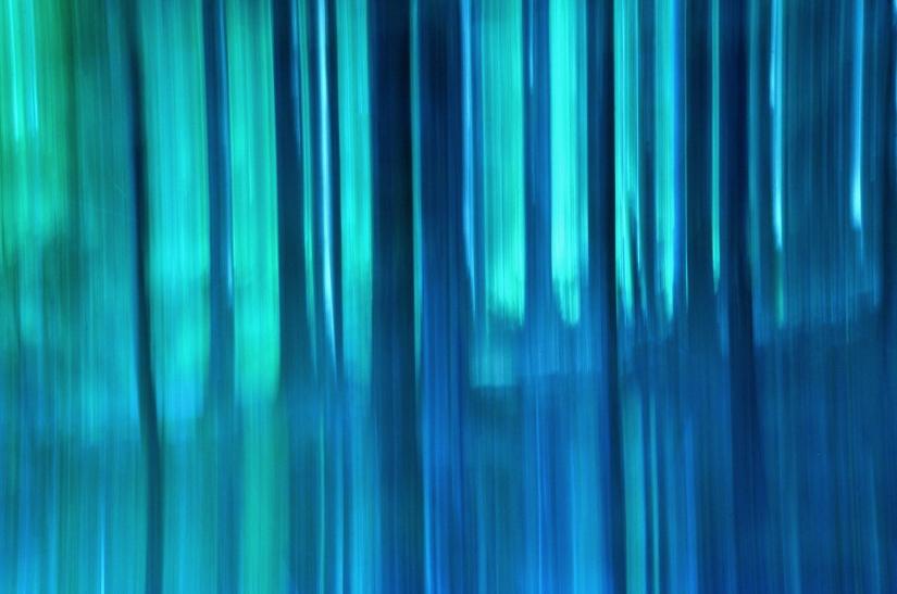 Blu shades