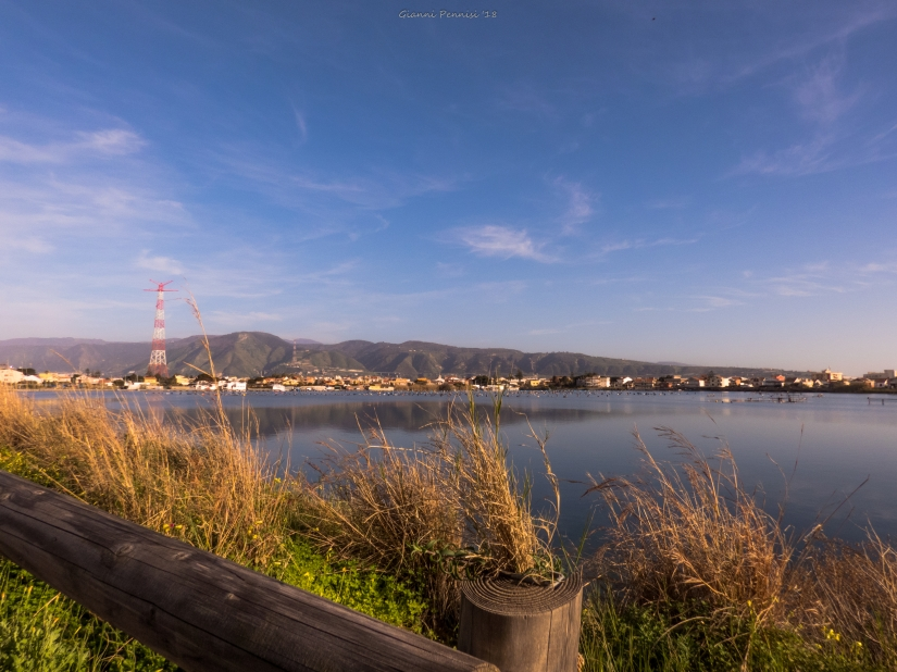 Bridge Vs. Nature