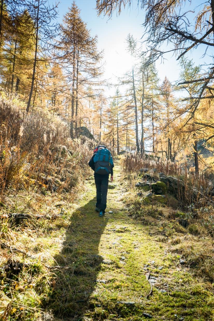 Camminata attraverso l'autunno.