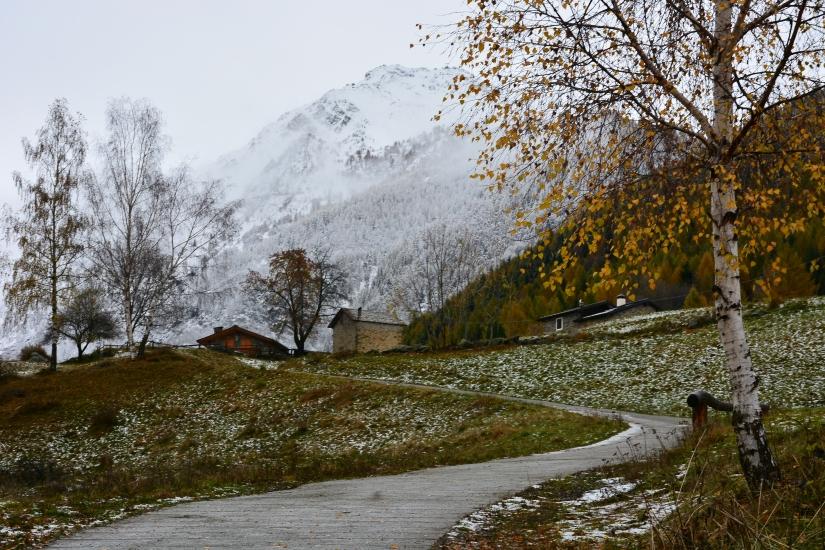 Carnale - Valtellina