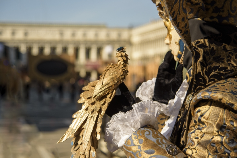 Carnevale in Piazza S. Marco