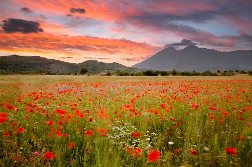 Cartolina d'Abruzzo
