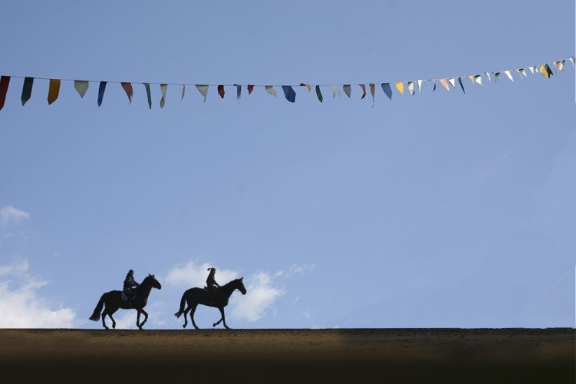 Cavalli in festa......