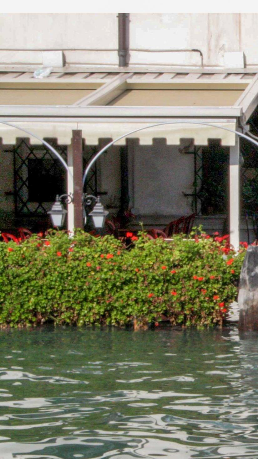 Collage venezia