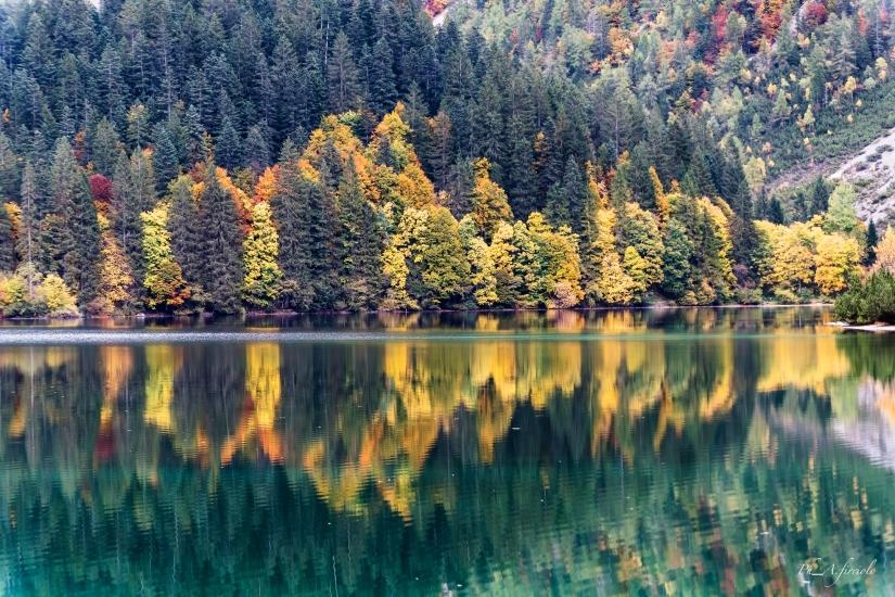 Colori d'autunno....