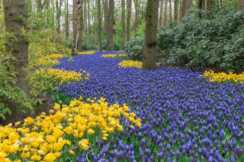 Colori di primavera