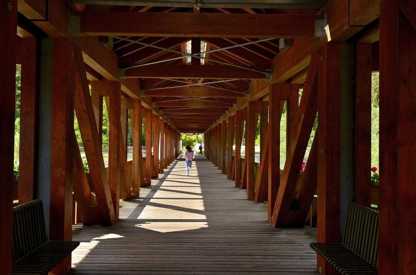 Correndo sul ponte