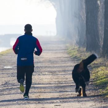 Correre con il suo cane