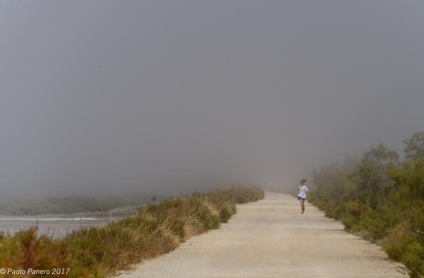 Correre nella nebbia. Run into the mist.