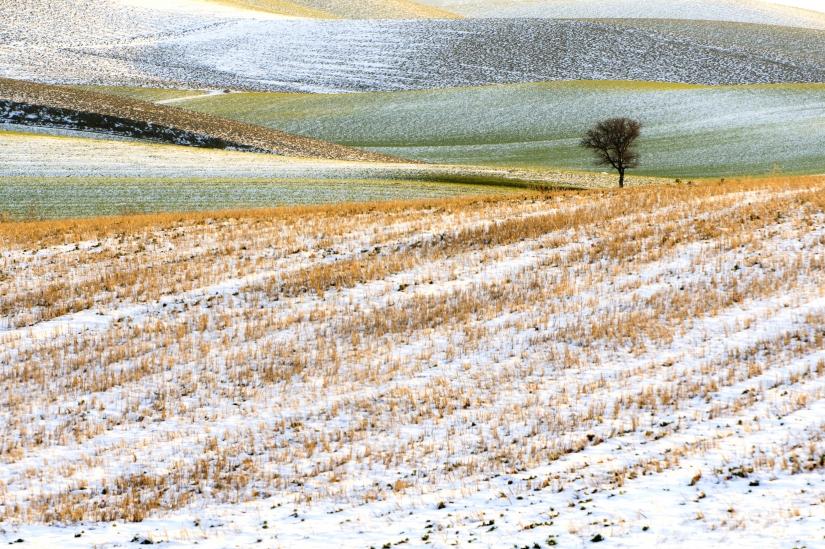 Daunia, poesia di un paesaggio / I colori della neve