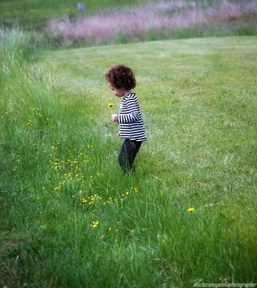Day by day...sino al traguardo...sino agli spazi infiniti...per raccogliere un fiore
