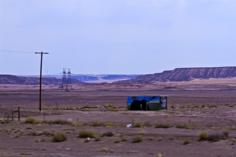 Deserto dell'Arizona USA