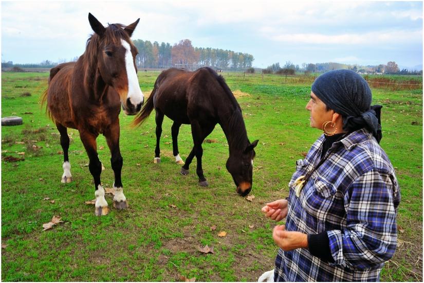 Donna.......e cavalli