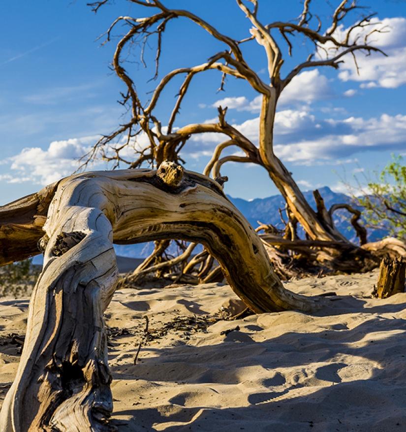 Dune nella Death Valley