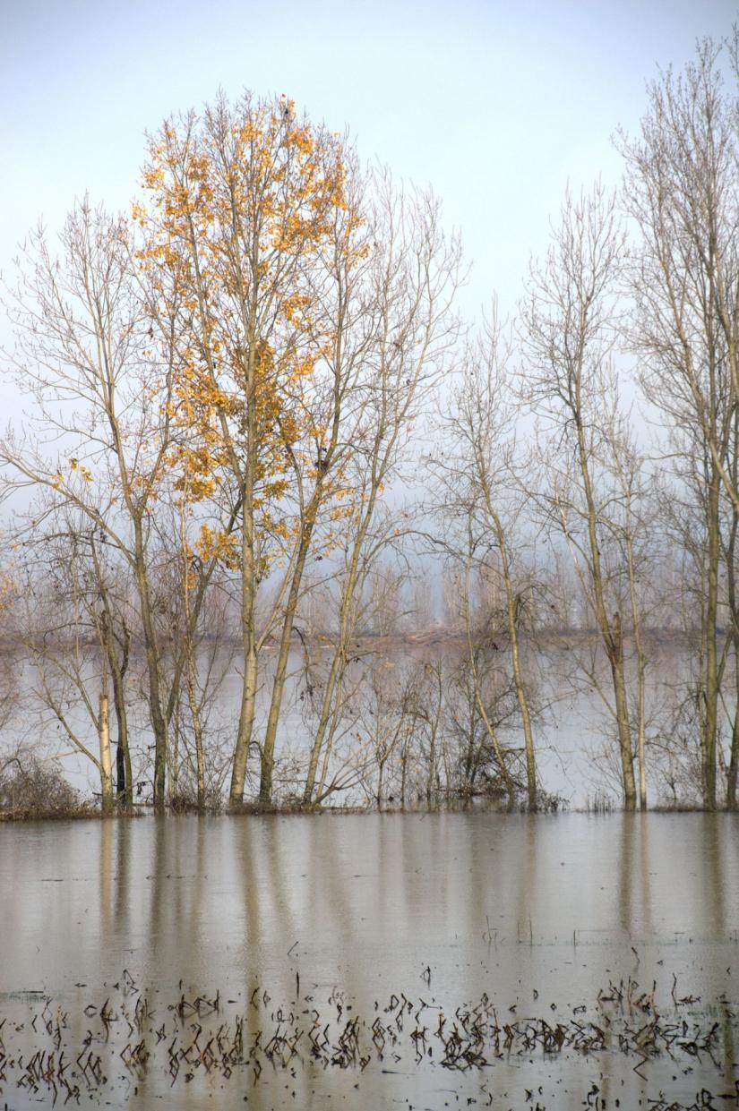 Esondazione 8