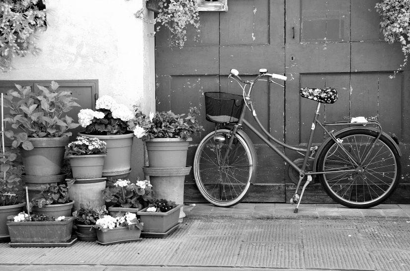 Fiori e bici in bianco e nero