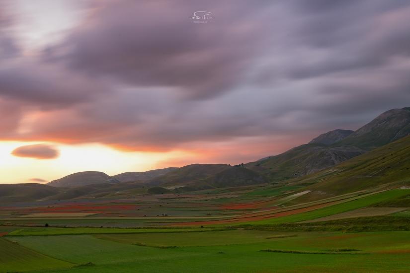 Fioritura Castelluccio di Norcia, l'anima e il vento