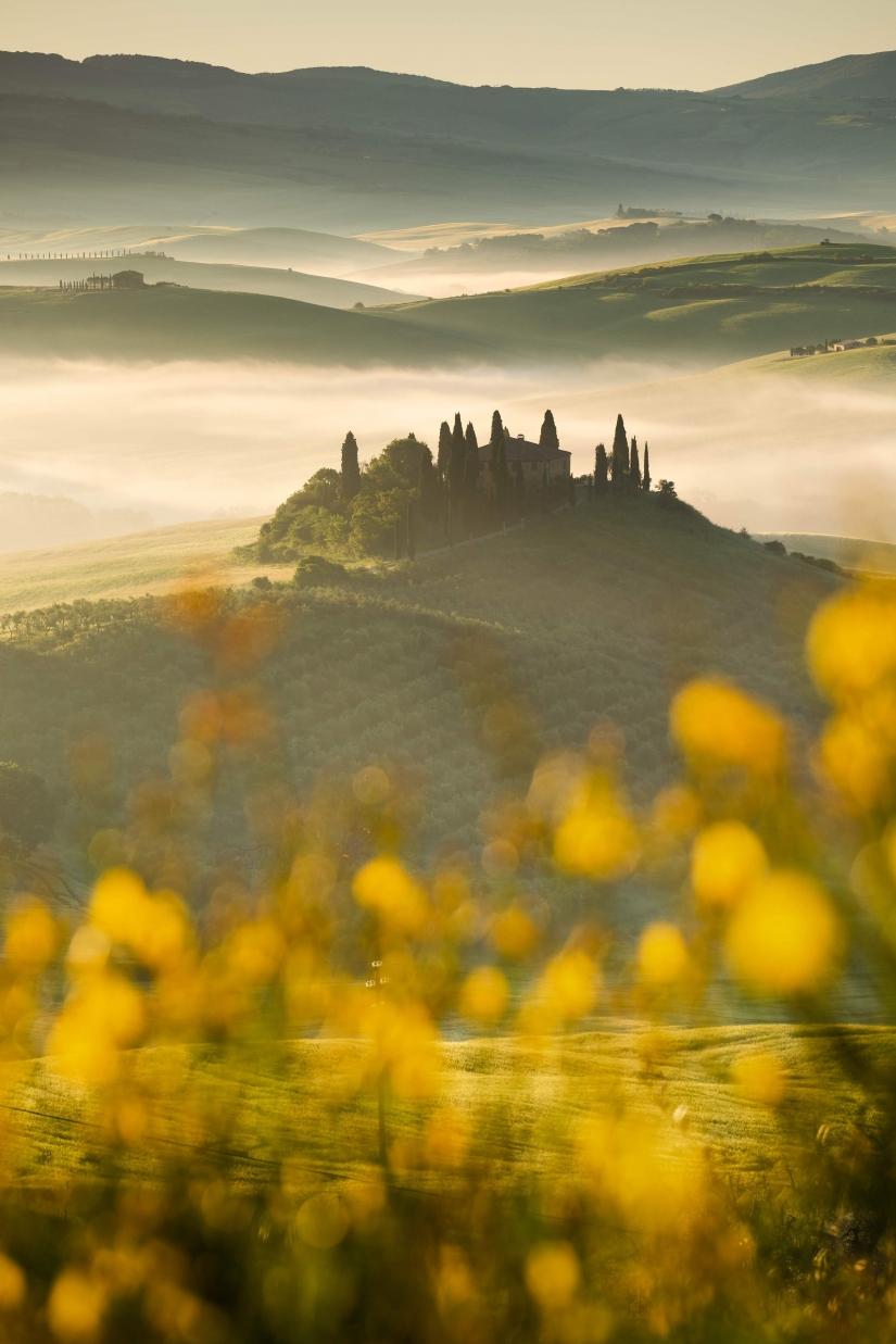Gold tuscany