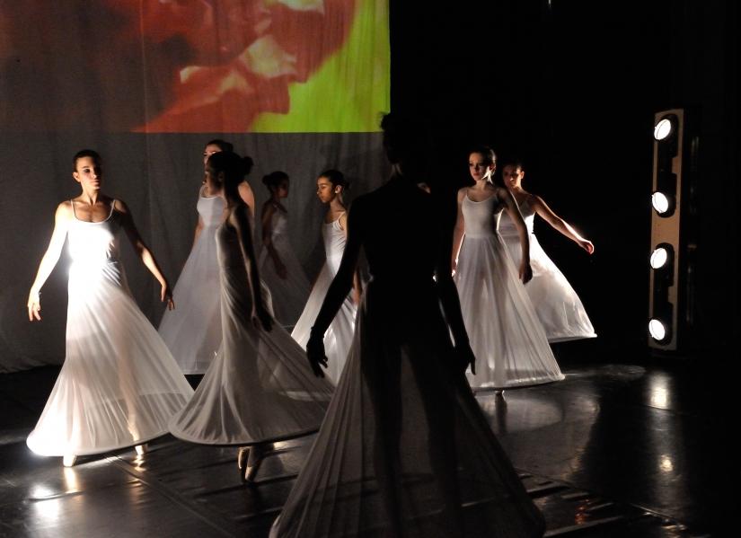 Harmonia Danza