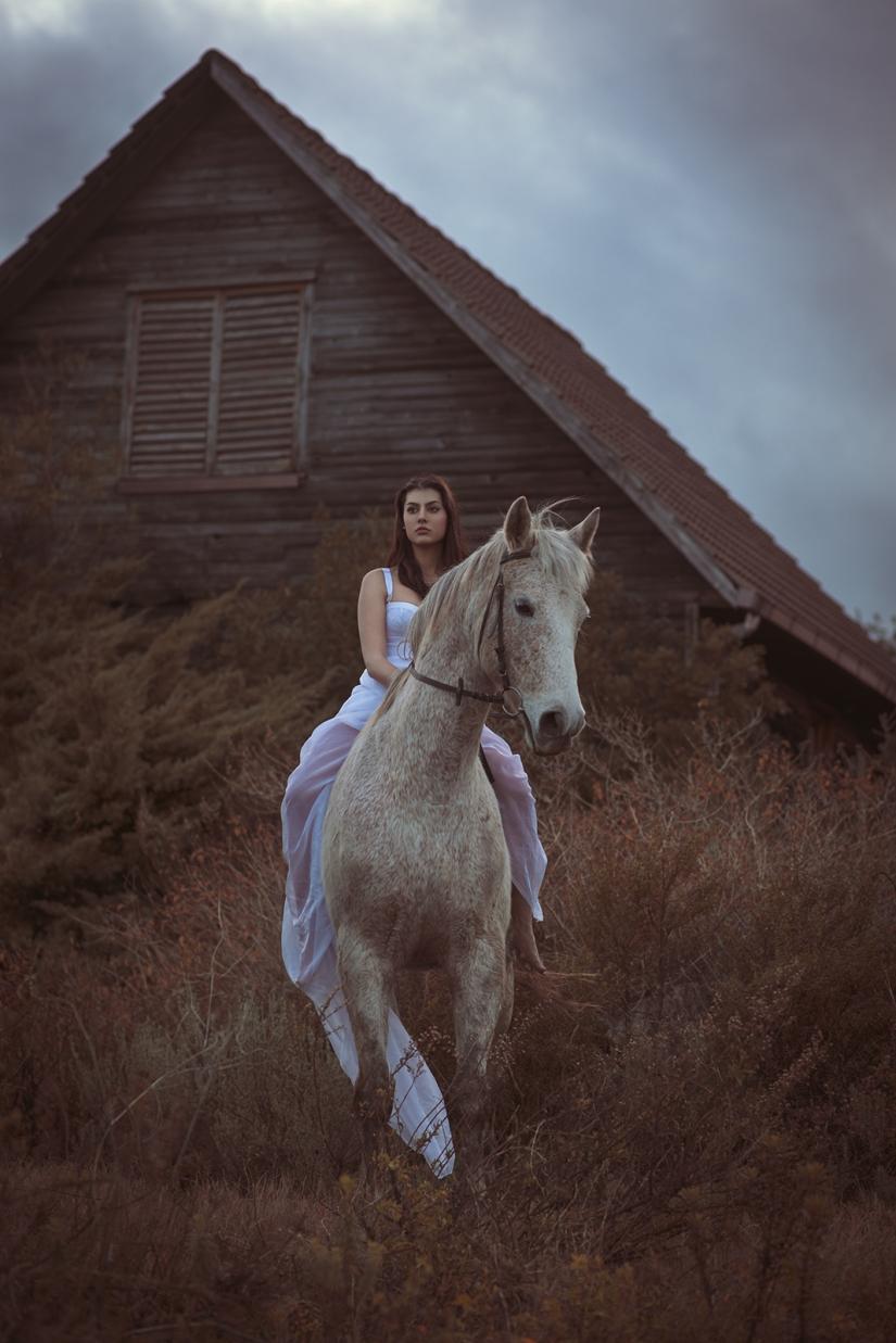 Horse's house II