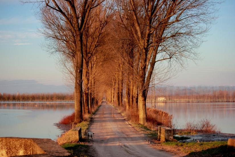 Il camino in mezzo