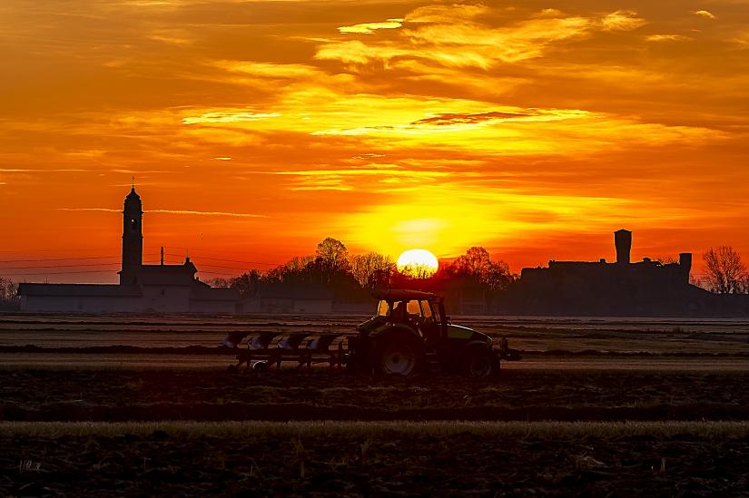 Il lavoro nei campi inizia all'alba