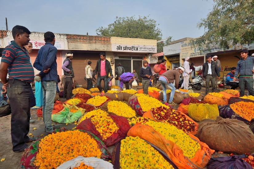 Il Mercato dei Fiori #2