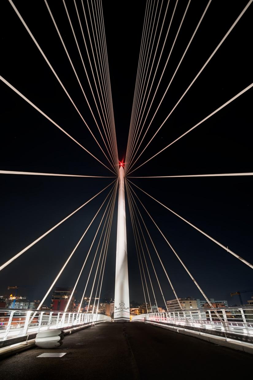 IL PONTE SUI DUE FIUMI - Ponte di Calatrava
