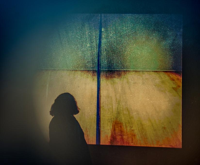 Il quadro e la signora (Musei e opere d'arte)