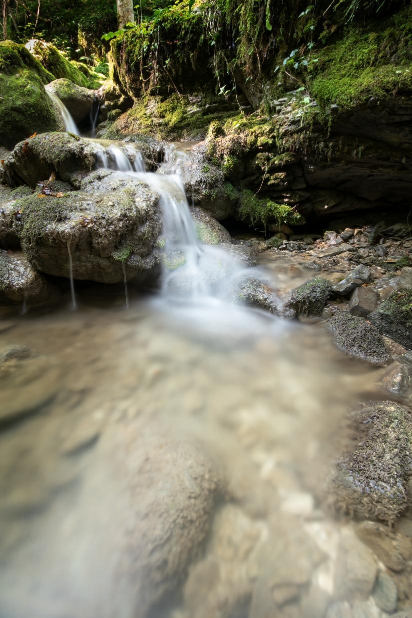 Il Respiro Interiore nella Natura