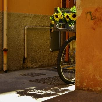 la bicicletta in  fiore ...