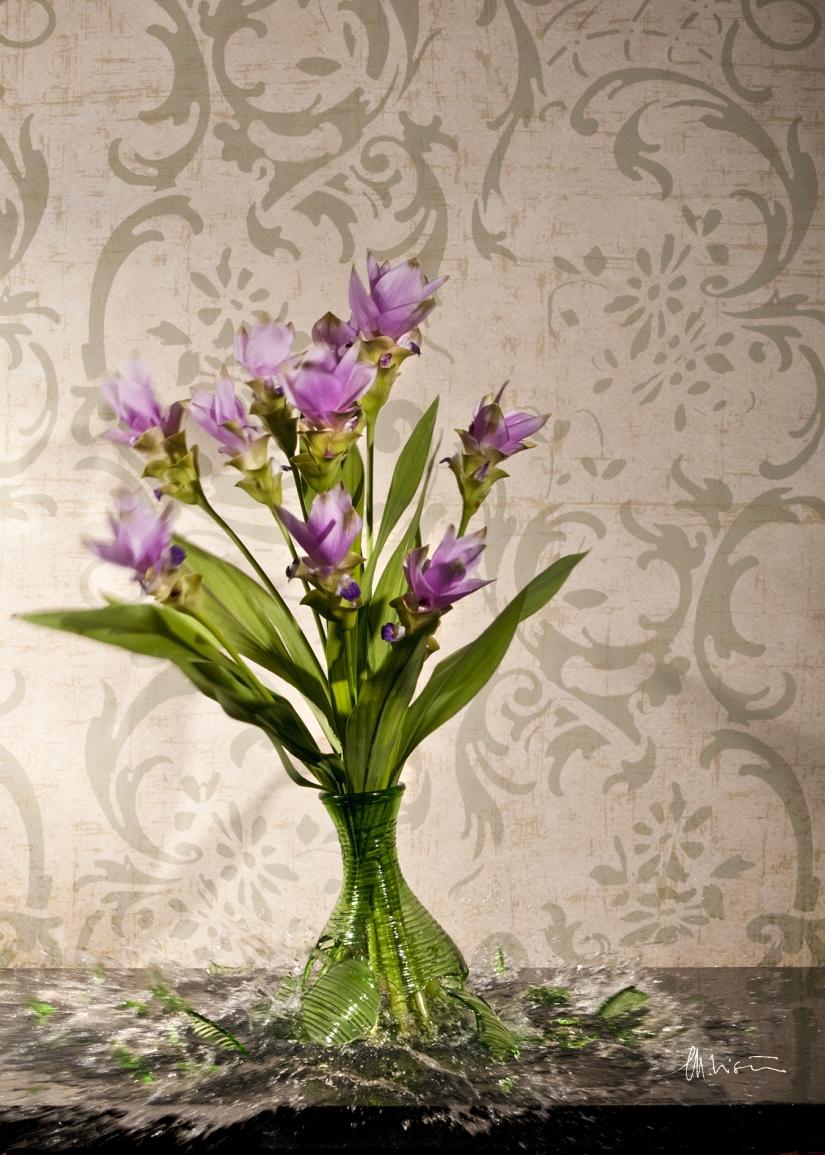 La dinamica dei fiori: Curcuma
