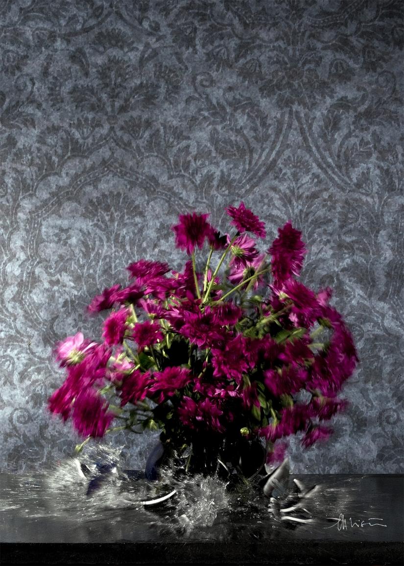 La dinamica dei fiori: San Carlino