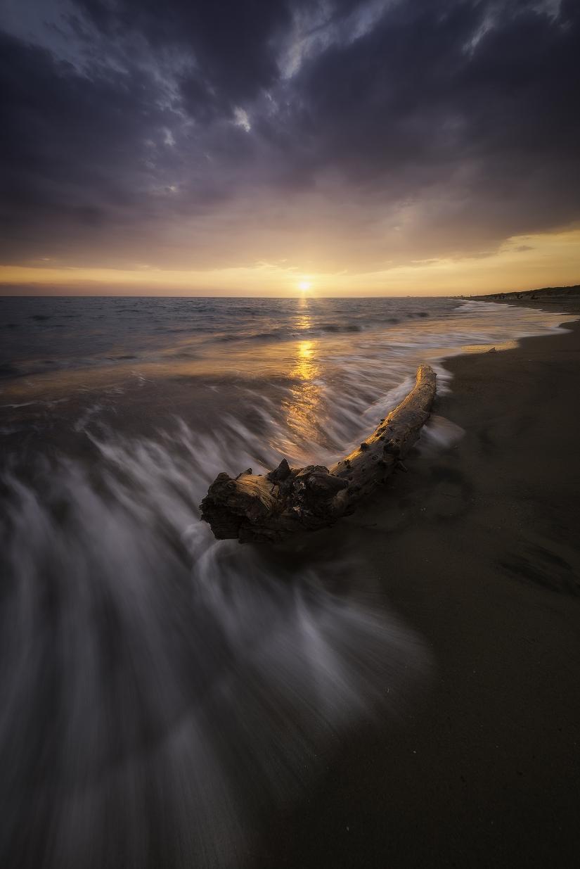 La fotografia è un arte; anzi è più che un'arte,è il fenomeno solare in cui l'artista collabora con il sole.  (Alphonse de Lamartine).
