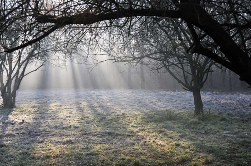 La luce del primo sole