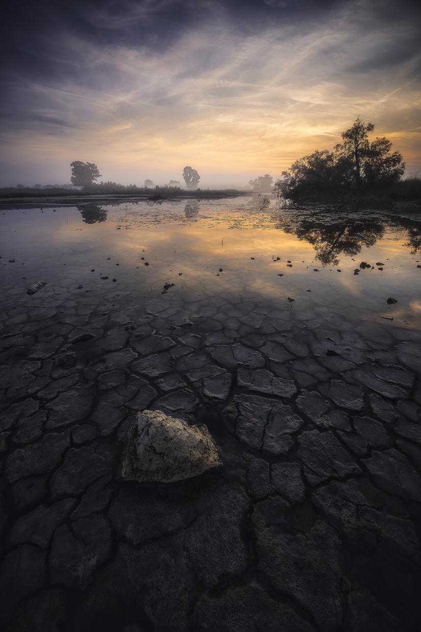La luce dell'alba riflette sul quel che resta di un lago d'estate. Lago del Fogliano,Latina.
